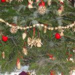 Jaký je nejlepší vánoční stromeček?