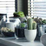 Životnost plastových oken