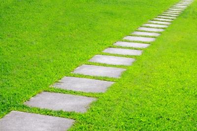 Díl první: Péče o trávník aneb Nejen sekáním živa je tráva